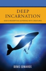 Deep Incarnation: God's Redemptive Suffering with Creatures - Duffy Lectures Series