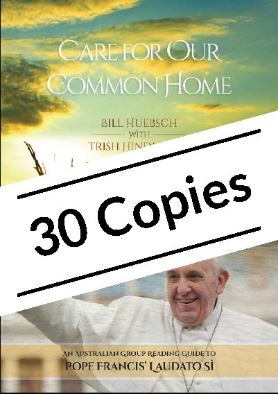 Care for Our Common Home: An Australian Group Reading Guide to Pope Francis' Laudato Si Pack of 30 copies