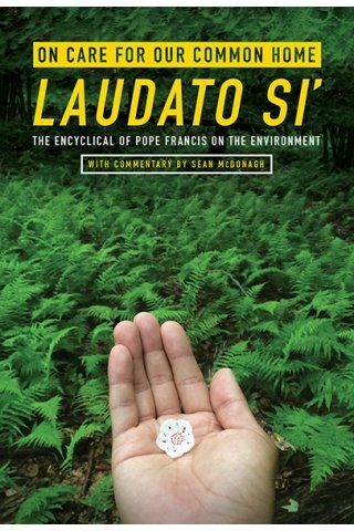 On Care for Our Common Home, Laudato Si': The Encyclical of Pope Francis on the Environment with Commentary