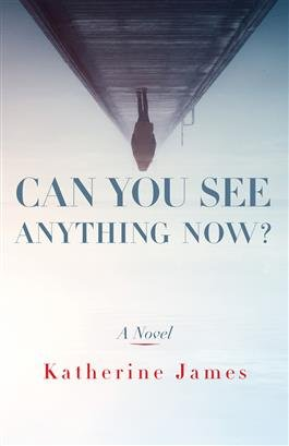 Can you see anything now? A Novel